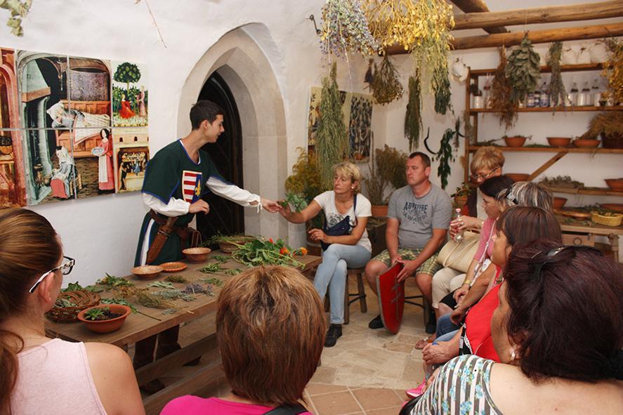 Gyógynövényismereti előadás a Diósgyőri várban